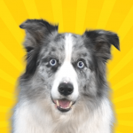 Real Pets™ by Fruwee 297 MOD APK