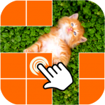What is picture behind cell 0.3.6 MOD APK