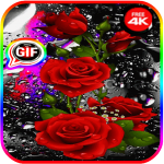 Beautiful flowers and roses pictures Gif 2020 3.8  MOD APK