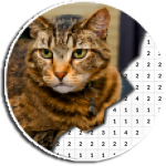 Cat Photography Coloring Book – Color By Number 4.0 MOD APK