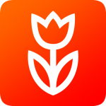Flowwow flowers. Delivery of flowers and sweets 2.6.1 MOD APK