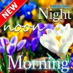 Good Morning Good Night beautiful flower wishes 8.6.3.0 MOD APK