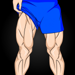 Leg Workouts – Lower Body Exercises for men 1.6.6  MOD APK