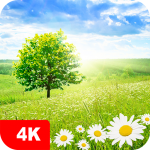 Nature Wallpapers 4K 5.0.62 MOD APK