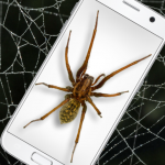 Spider in Phone Funny Joke – iSpider 1.0 MOD APK