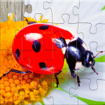 Insect Jigsaw Puzzles Game – For Kids & Adults 🐞 25.2  MOD APK