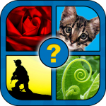 What Word? 4 pics 2.6 MOD APK