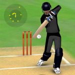 Smashing Cricket a cricket game like none other  3.0.8 MOD APK