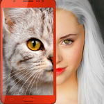 Kittens: what cat are you? prank 2.7 MOD APK